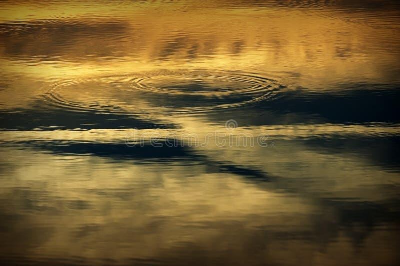 Κυματισμοί στο νερό στοκ φωτογραφίες
