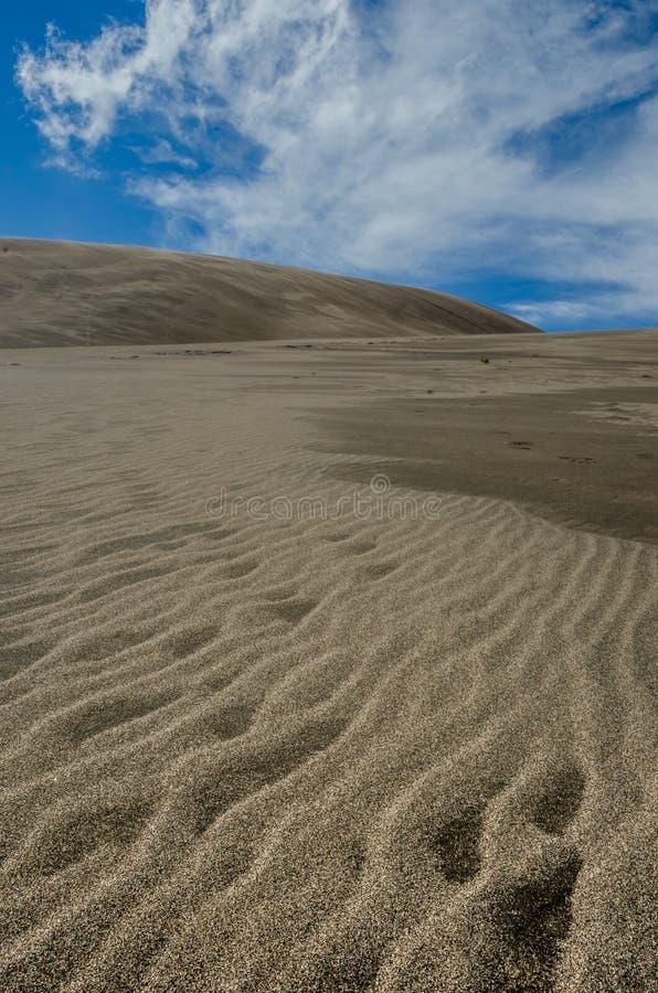 Κυματισμοί της κατακορύφου αμμόλοφων άμμου στοκ εικόνα