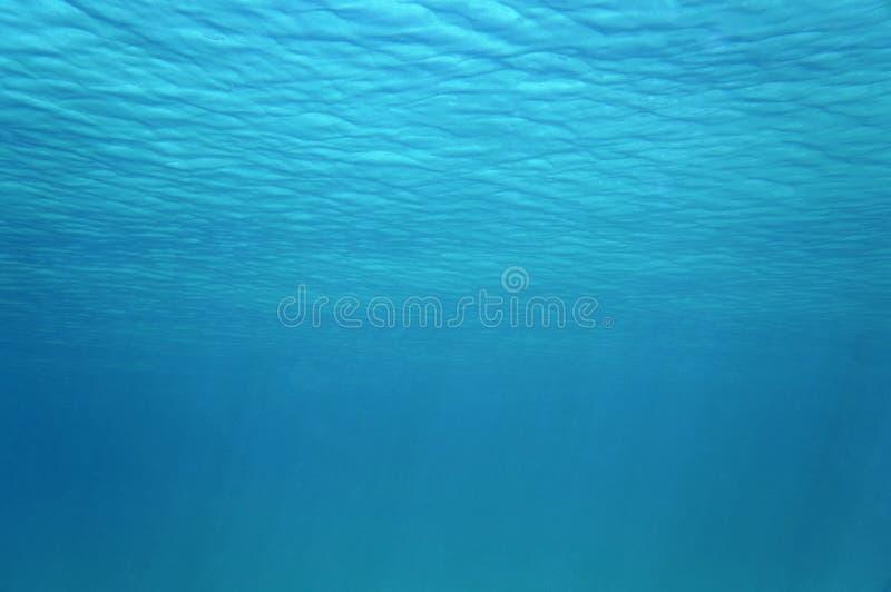 Κυματισμοί της υποβρύχιας επιφάνειας στην καραϊβική θάλασσα στοκ εικόνες με δικαίωμα ελεύθερης χρήσης