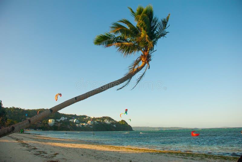 Κυματισμοί φοινίκων στον αέρα Kitesurfing Τοπίο βραδιού ενός μικρού νησιού και της θάλασσας Boracay, Φιλιππίνες στοκ εικόνες
