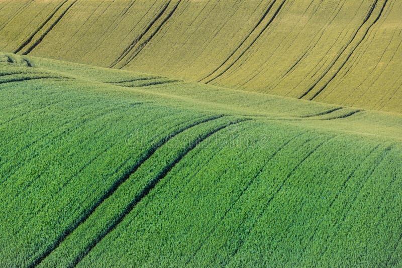 Κυματιστό χρωματισμένο περίληψη τοπίο στοκ φωτογραφίες