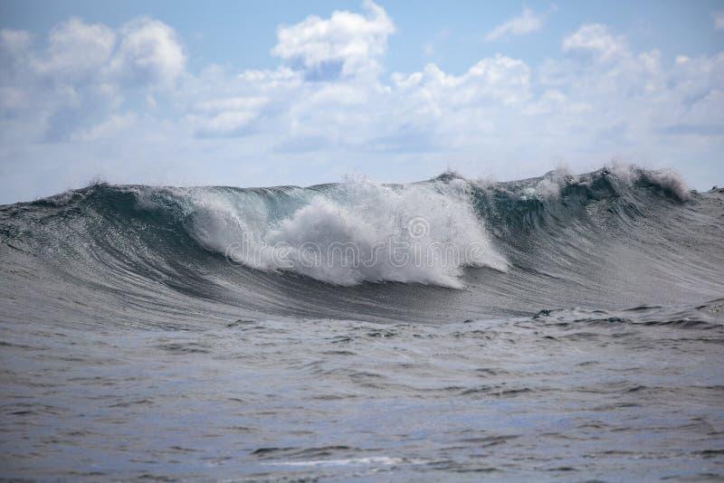 Κυματοθραύστης Χαβάη στοκ εικόνες