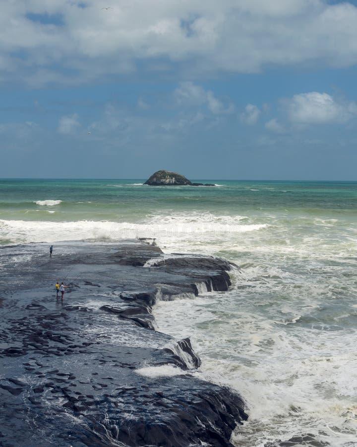Κυματωγή Muriwai και αλιεία, Νέα Ζηλανδία στοκ εικόνα με δικαίωμα ελεύθερης χρήσης