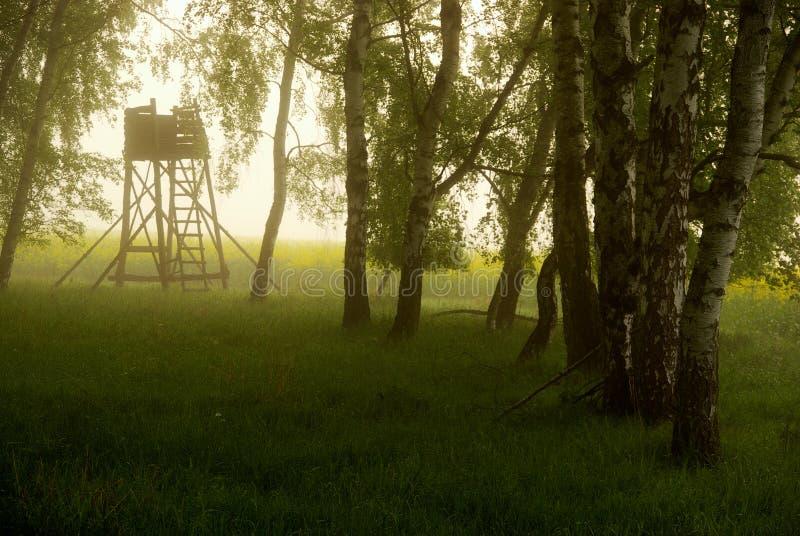 κυνήγι δορών στοκ φωτογραφία με δικαίωμα ελεύθερης χρήσης