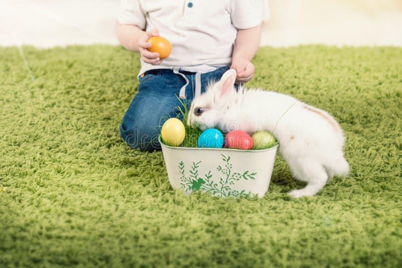 Κυνήγι μικρών παιδιών για το αυγό Πάσχας στοκ εικόνες με δικαίωμα ελεύθερης χρήσης