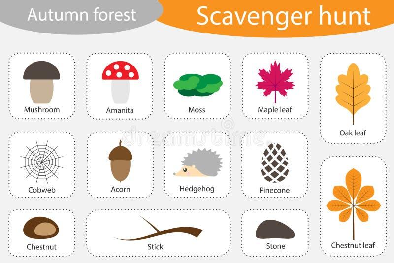 Κυνήγι οδοκαθαριστών, δασικές, διαφορετικές ζωηρόχρωμες εικόνες φθινοπώρου φθινοπώρου για τα παιδιά, παιχνίδι αναζήτησης εκπαίδευ διανυσματική απεικόνιση