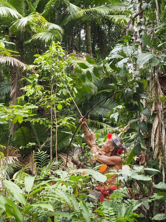 Κυνήγι σαμάνων Mentawai στη ζούγκλα στοκ φωτογραφίες με δικαίωμα ελεύθερης χρήσης