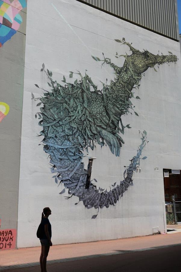 Κυνηγός γκράφιτι την ηλιόλουστη ημέρα στο Περθ στοκ εικόνα