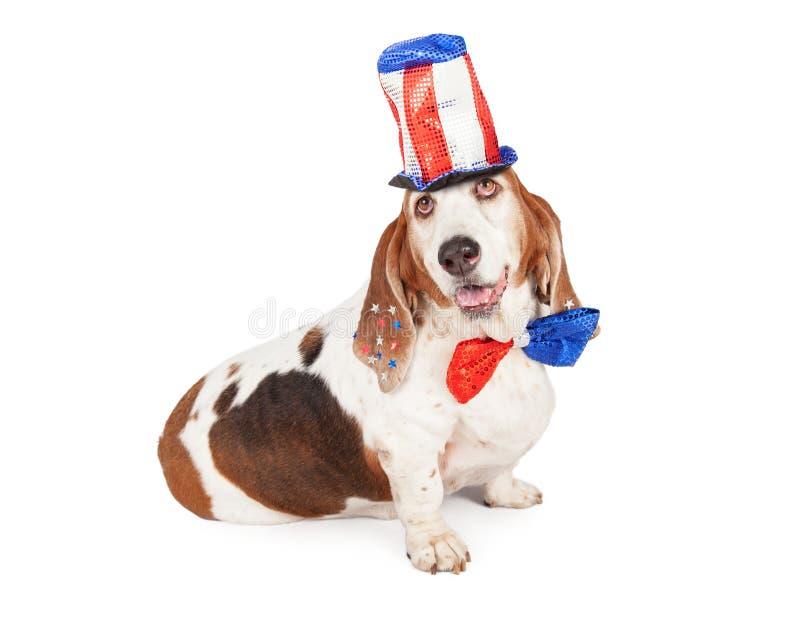 Κυνηγόσκυλο μπασέ ημέρας της ανεξαρτησίας στοκ εικόνες με δικαίωμα ελεύθερης χρήσης