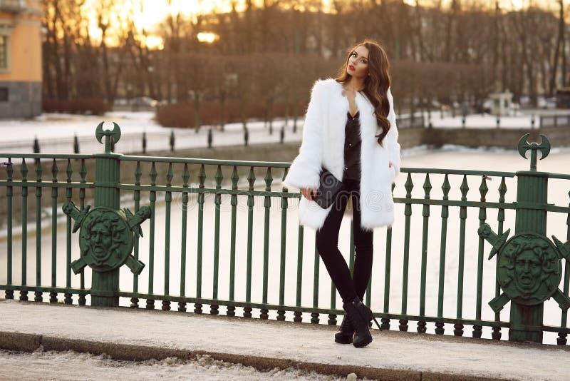 Κυρία στο παλτό γουνών υπαίθρια στοκ φωτογραφία με δικαίωμα ελεύθερης χρήσης