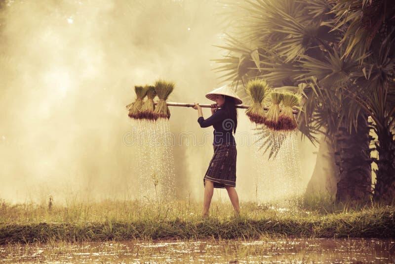 Κυρία της Farmer στοκ φωτογραφία με δικαίωμα ελεύθερης χρήσης