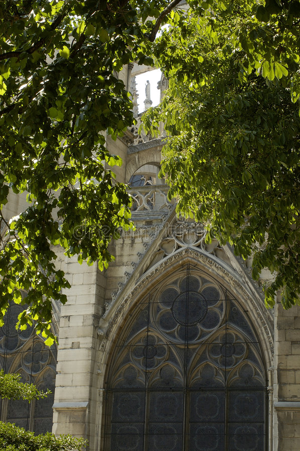 κυρία notre Παρίσι 13 καθεδρικών στοκ φωτογραφίες με δικαίωμα ελεύθερης χρήσης