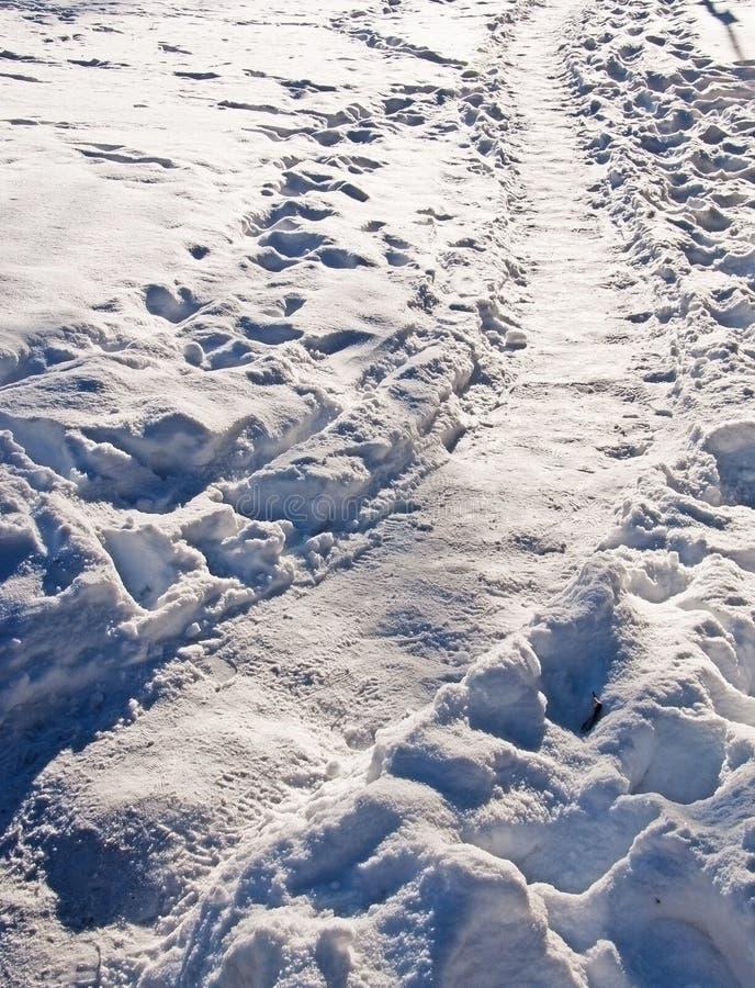 Κυρτή φυσική πορεία χιονιού στοκ εικόνες