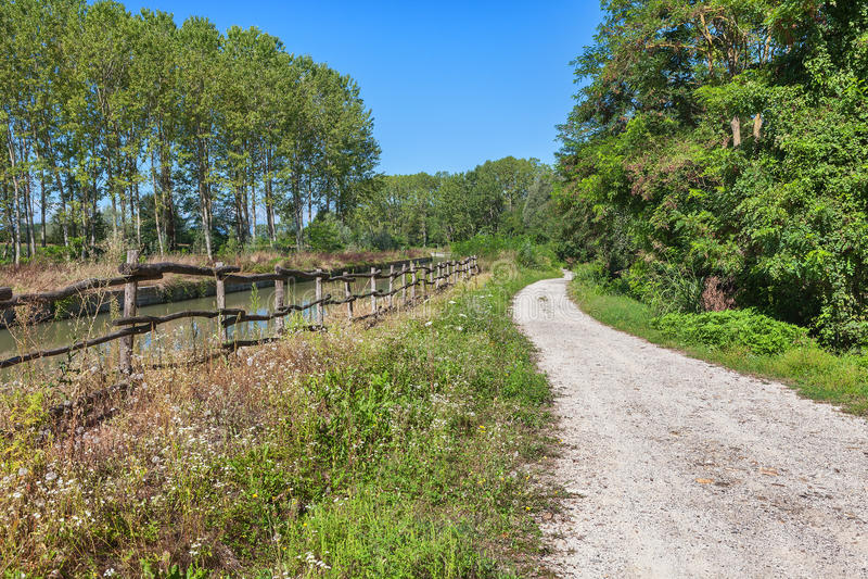 Κυρτός αγροτικός δρόμος Piedmont, Ιταλία στοκ εικόνες με δικαίωμα ελεύθερης χρήσης
