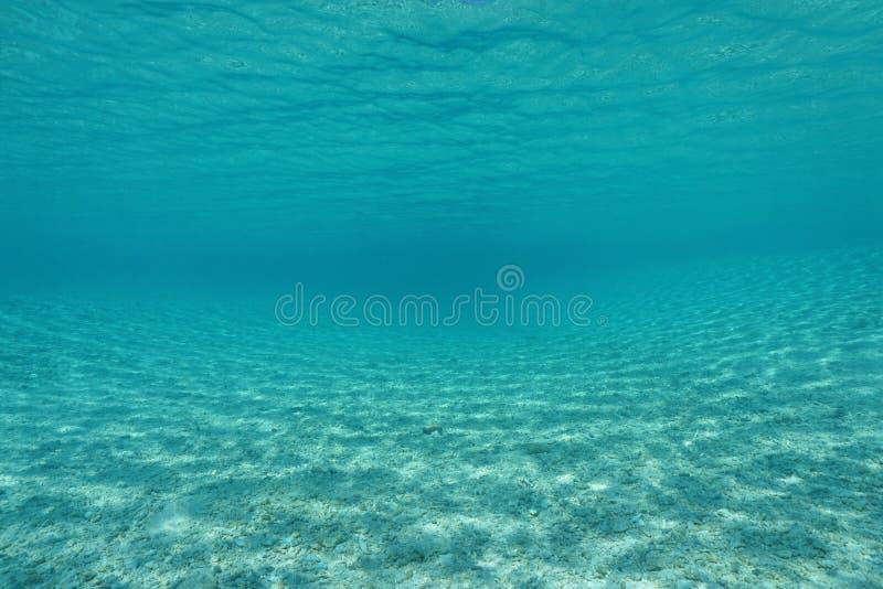 Κυρτός αμμώδης υποβρύχιος Ειρηνικός Ωκεανός βυθού στοκ εικόνες