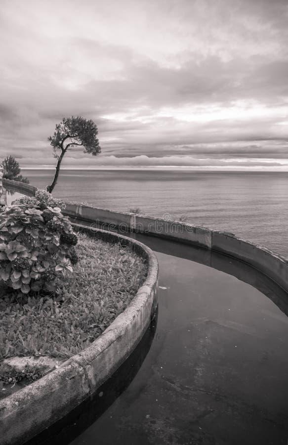 Κυρτό κανάλι με το νερό με το δέντρο και λουλούδια ως δημιουργικό φυσικό υπόβαθρο που αυξάνεται επάνω επάνω από τον ωκεανό στο ig στοκ εικόνα