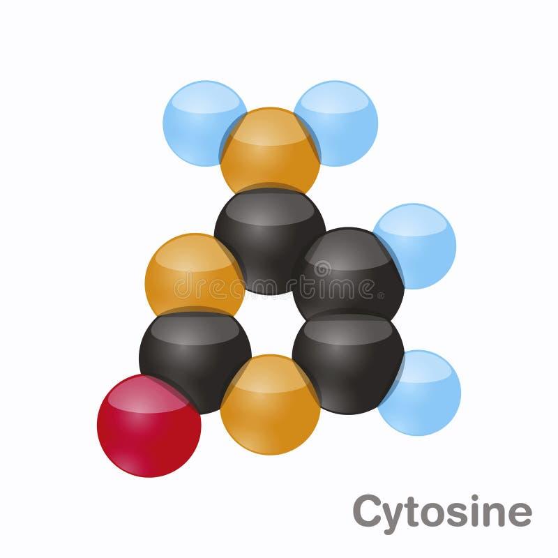 Κυτοσίνη, Γ Pyrimidine μόριο nucleobase Βάση παρούσα στο DNA τρισδιάστατη διανυσματική απεικόνιση στο άσπρο υπόβαθρο διανυσματική απεικόνιση