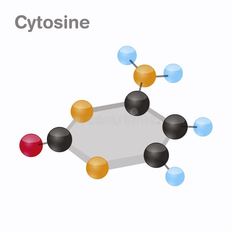 Κυτοσίνη HexNut, Γ Pyrimidine μόριο nucleobase Παρόν στο DNA τρισδιάστατη διανυσματική απεικόνιση στο άσπρο υπόβαθρο απεικόνιση αποθεμάτων