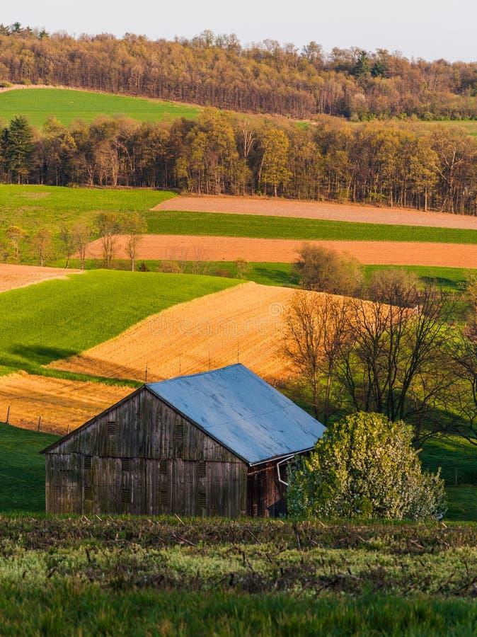 Κυλώντας λόφοι, αγροτικοί τομείς, και μια σιταποθήκη στη νότια κομητεία της Υόρκης, PA στοκ εικόνα