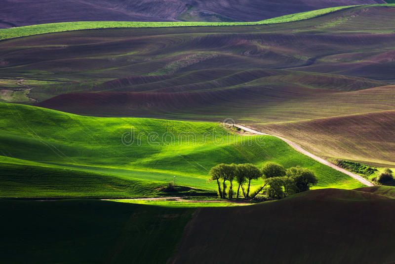 Κυλώντας λόφος και γεωργική γη στοκ φωτογραφίες με δικαίωμα ελεύθερης χρήσης
