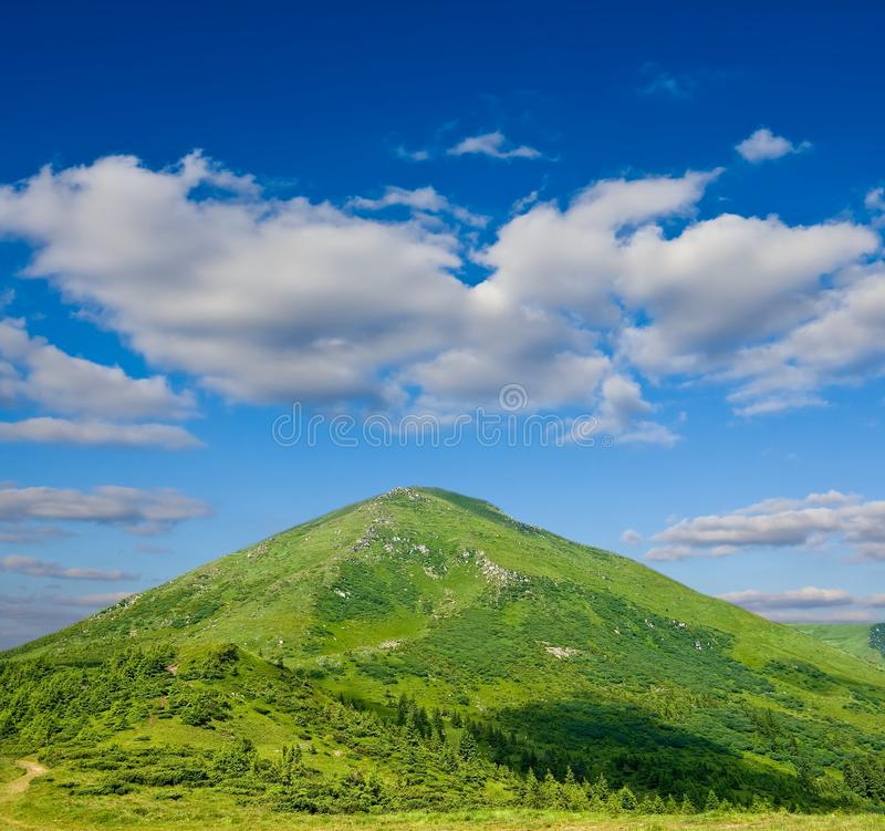 κωνικό πράσινο βουνό στοκ εικόνες
