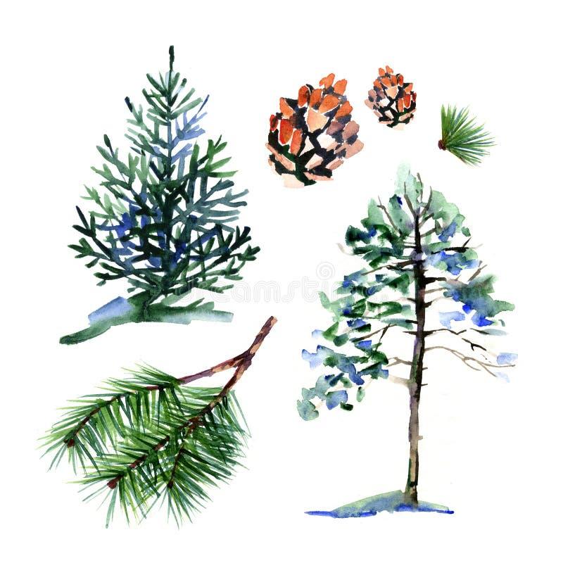 Κωνοφόρα δέντρα και στοιχεία - ένα σύμβολο του νέων έτους και των Χριστουγέννων υψηλό watercolor ποιοτικής ανίχνευσης ζωγραφικής  ελεύθερη απεικόνιση δικαιώματος