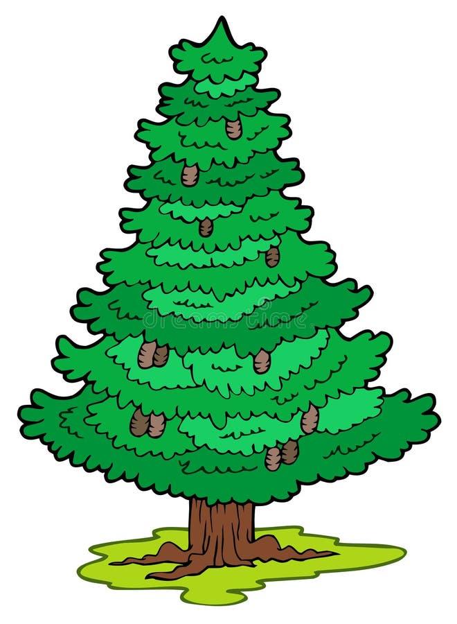 κωνοφόρο δέντρο κινούμεν&omega διανυσματική απεικόνιση