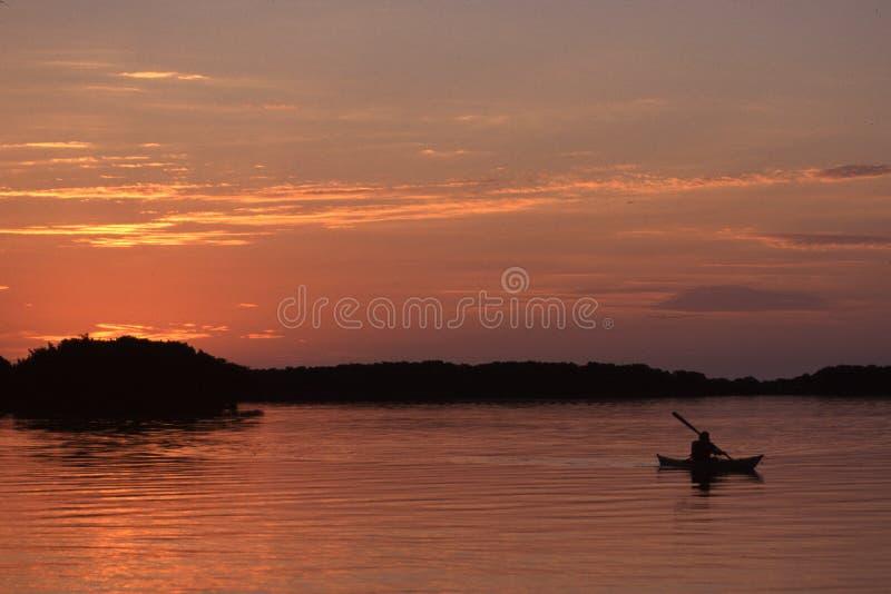 κωπηλασία Στοκ εικόνες με δικαίωμα ελεύθερης χρήσης
