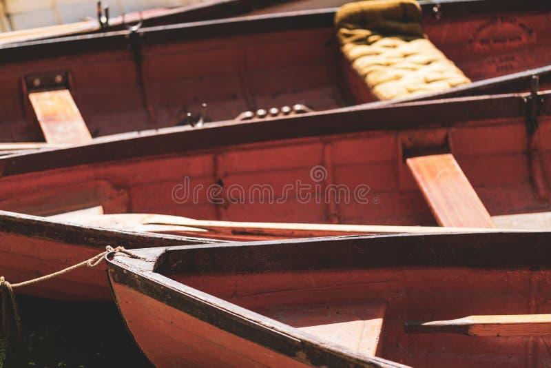 Κωπηλατώντας τις βάρκες που εμπλέκονται στοκ εικόνες