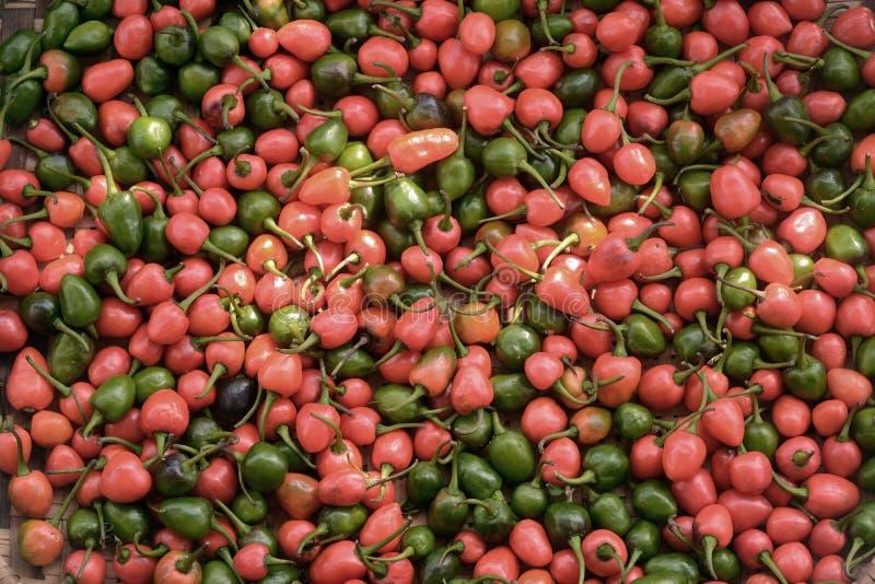 Κόκκινα και πράσινα τσίλι: Νταλλ στοκ φωτογραφίες με δικαίωμα ελεύθερης χρήσης