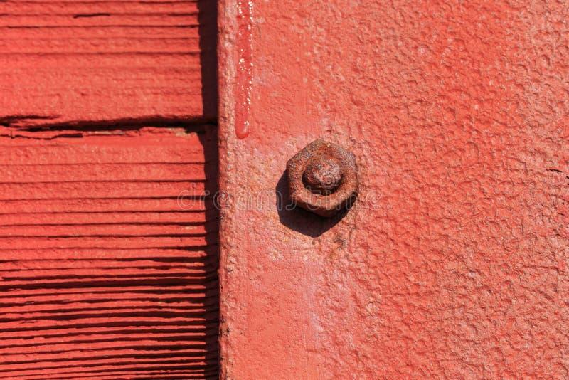 Κόκκινα καρύδι και μπουλόνι grunge με την εστίαση μόνο σε ένα καρύδι στοκ εικόνες