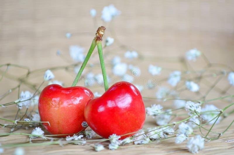 Κόκκινα κεράσια με τα μικρά άσπρα λουλούδια στοκ φωτογραφία με δικαίωμα ελεύθερης χρήσης