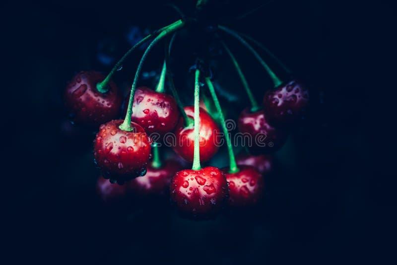 Κόκκινα κεράσια στο σκοτεινό υπόβαθρο στοκ φωτογραφίες με δικαίωμα ελεύθερης χρήσης