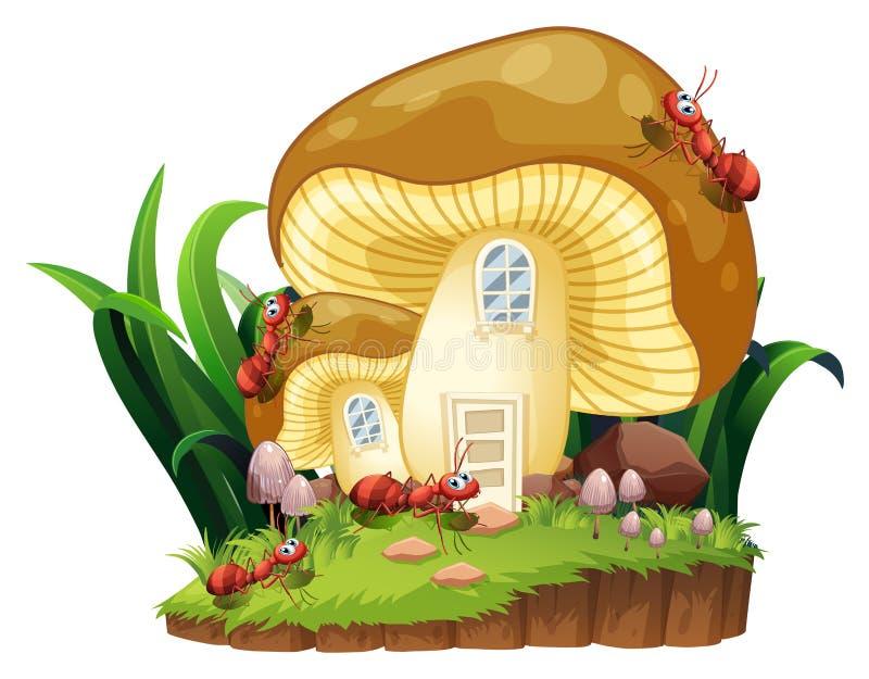 Κόκκινα μυρμήγκια και σπίτι μανιταριών στον κήπο διανυσματική απεικόνιση