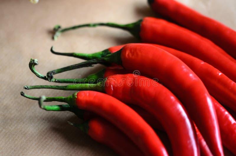 Κόκκινα πιπέρια πέρα από το μαλακό καφετί υπόβαθρο στοκ εικόνα με δικαίωμα ελεύθερης χρήσης