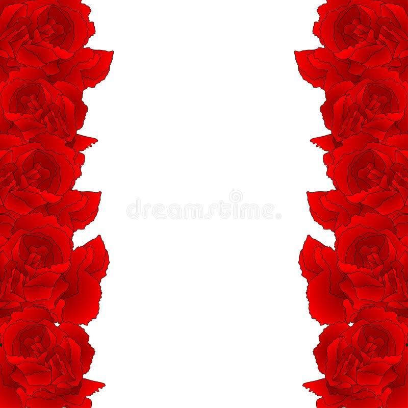 Κόκκινα σύνορα λουλουδιών γαρίφαλων, caryophyllus Dianthus - ροζ γαρίφαλων Εθνικό λουλούδι της Ισπανίας, του Μονακό, και της Σλοβ διανυσματική απεικόνιση