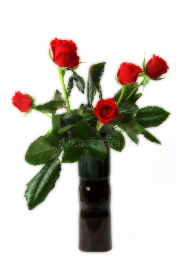 κόκκινα τριαντάφυλλα ανθ& στοκ εικόνα