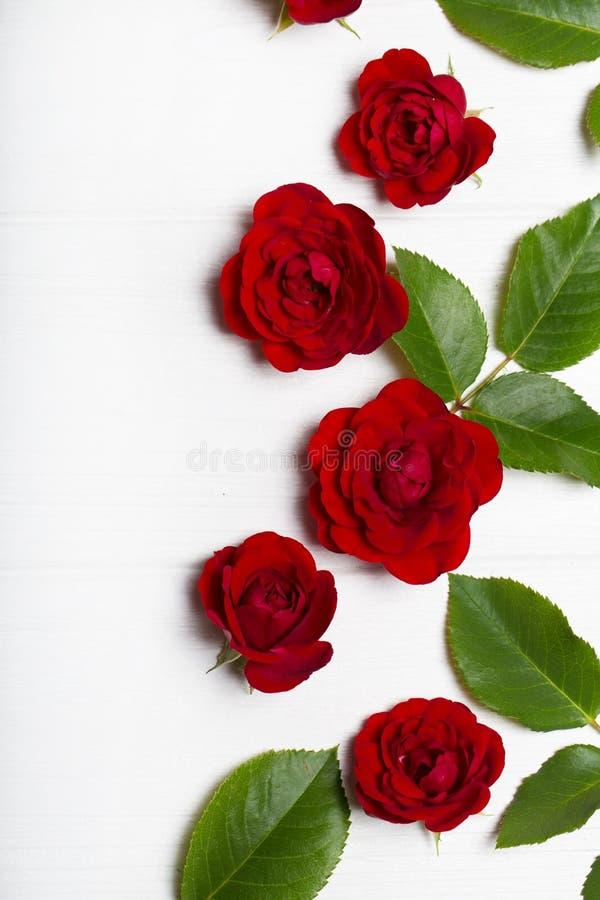 Κόκκινα τριαντάφυλλα και πράσινα φύλλα σε έναν άσπρο ξύλινο πίνακα Η εκλεκτής ποιότητας Flor στοκ εικόνες με δικαίωμα ελεύθερης χρήσης