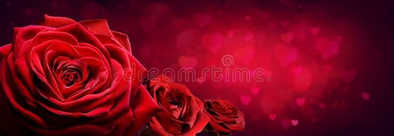 Κόκκινα τριαντάφυλλα στη μορφή καρδιών στοκ εικόνες