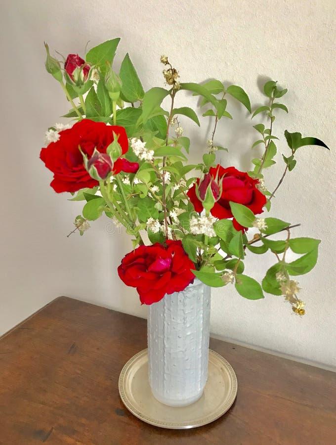 Κόκκινα τριαντάφυλλα σε ένα άσπρο βάζο στοκ εικόνες με δικαίωμα ελεύθερης χρήσης