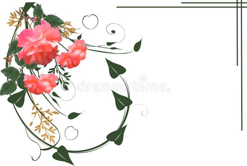 Κόκκινα τριαντάφυλλα στην πράσινη μπούκλα στο λευκό ελεύθερη απεικόνιση δικαιώματος