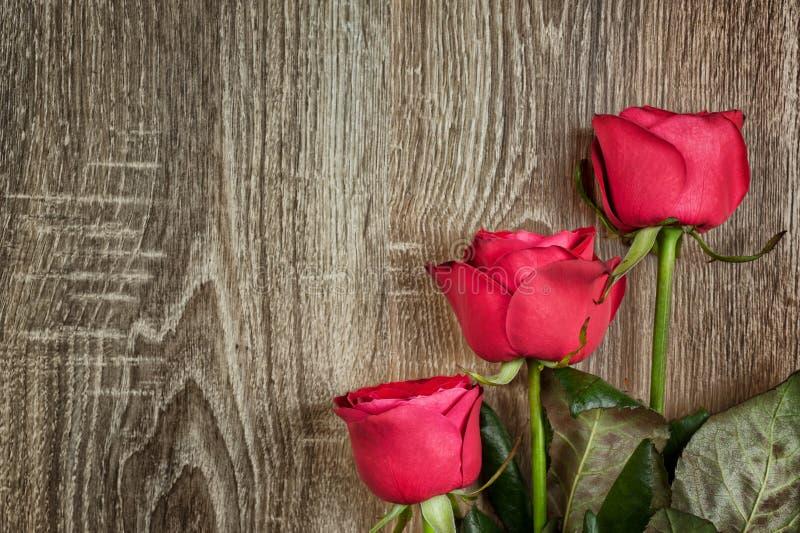 Κόκκινα τριαντάφυλλα στο ξύλο στοκ φωτογραφίες με δικαίωμα ελεύθερης χρήσης