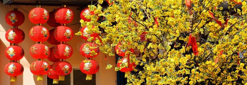 Κόκκινα φανάρια Chinease με το δέντρο στοκ εικόνες με δικαίωμα ελεύθερης χρήσης