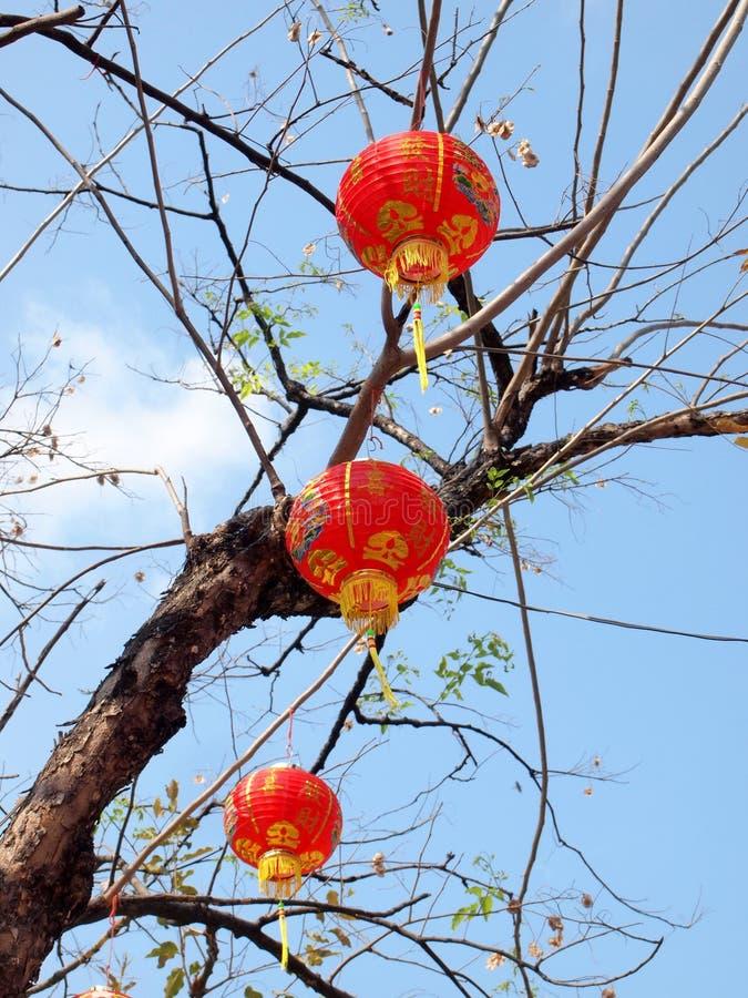 Κόκκινα φανάρια Chinease στο δέντρο στοκ εικόνα με δικαίωμα ελεύθερης χρήσης