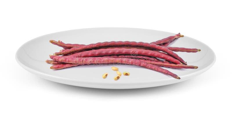 Κόκκινα φασόλια στο πιάτο που απομονώνεται στο άσπρο υπόβαθρο στοκ φωτογραφία με δικαίωμα ελεύθερης χρήσης
