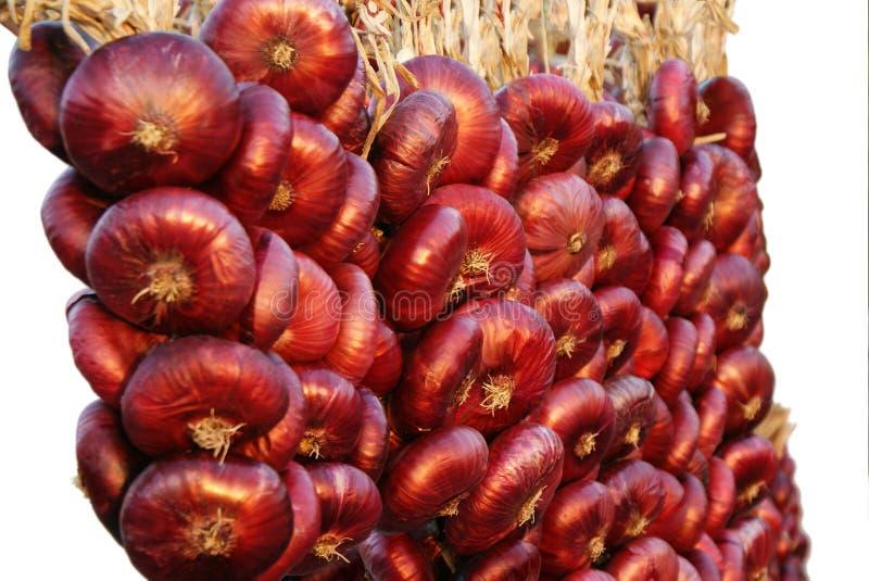 Κόκκινα φρέσκα λαχανικά κρεμμυδιών στις δέσμες στοκ εικόνες