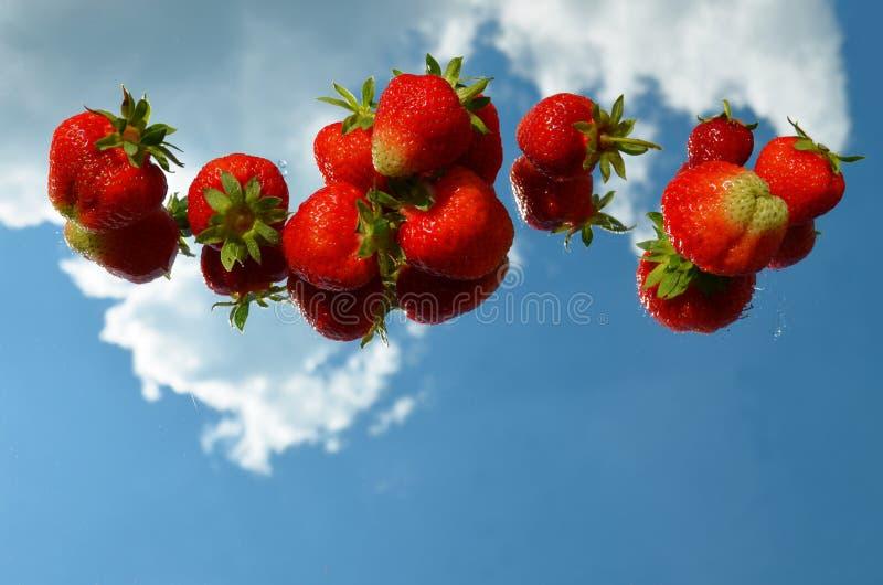 Κόκκινα ώριμα μούρα φραουλών που σχεδιάζονται οριζόντια σε μια σειρά σε έναν καθρέφτη με την αντανάκλαση του ουρανού και των σύνν στοκ φωτογραφίες