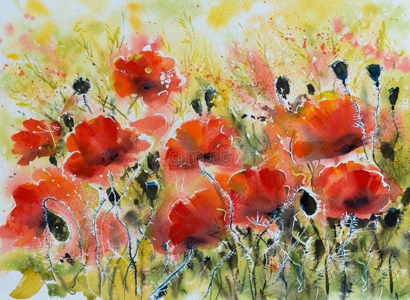 Κόκκινα watercolors λουλουδιών παπαρουνών που χρωματίζονται ελεύθερη απεικόνιση δικαιώματος