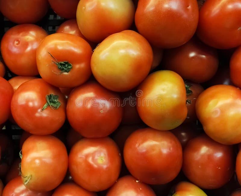 Κόκκινες ντομάτες που συσσωρεύονται σε ένα ράφι υπεραγορών Φωτεινός, εύγευστος και juicy στοκ εικόνα