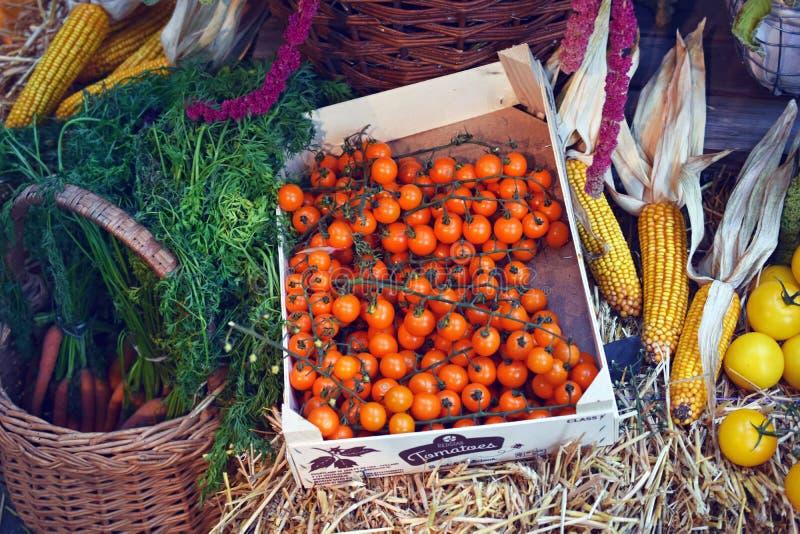 Κόκκινες ντομάτες σε ένα κιβώτιο φρούτων, έναν αραβόσιτο, κίτρινα ντομάτες και καρότα σε ένα καλάθι στοκ εικόνες